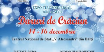 Expo-tîrg universal Daruri de Crăciun